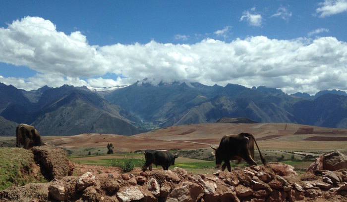 One of the many great pictures of the Sacred Valley.