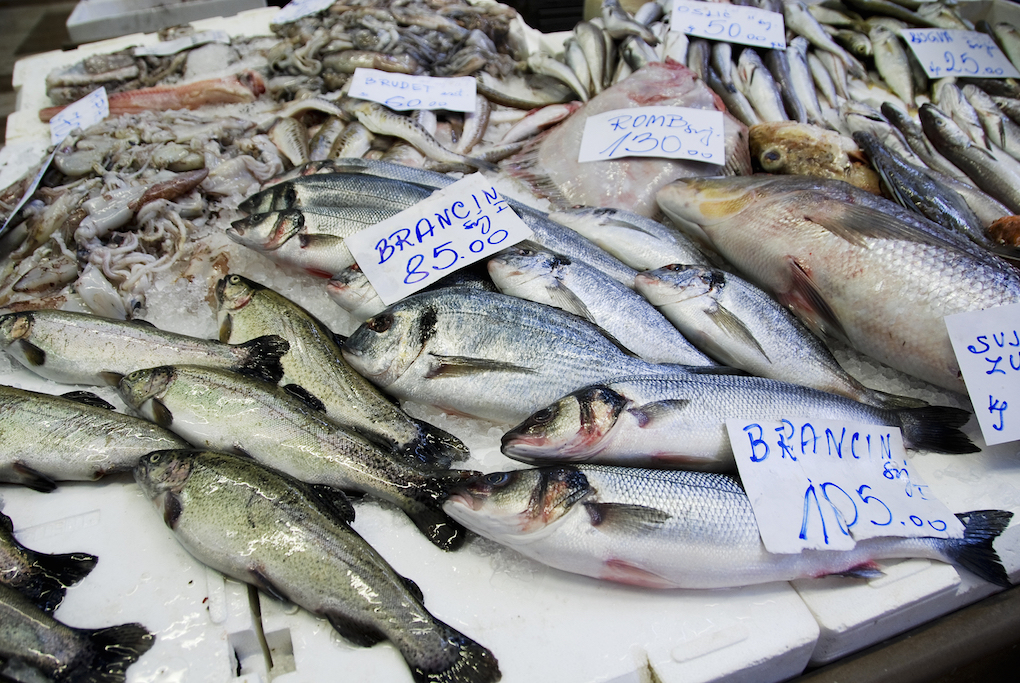 Peskarija Market - see the fishmongers sell local catch of the day
