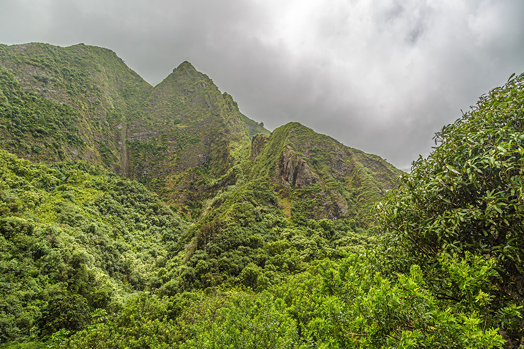 Mauna Kahalawai from within Iao Valley State Park