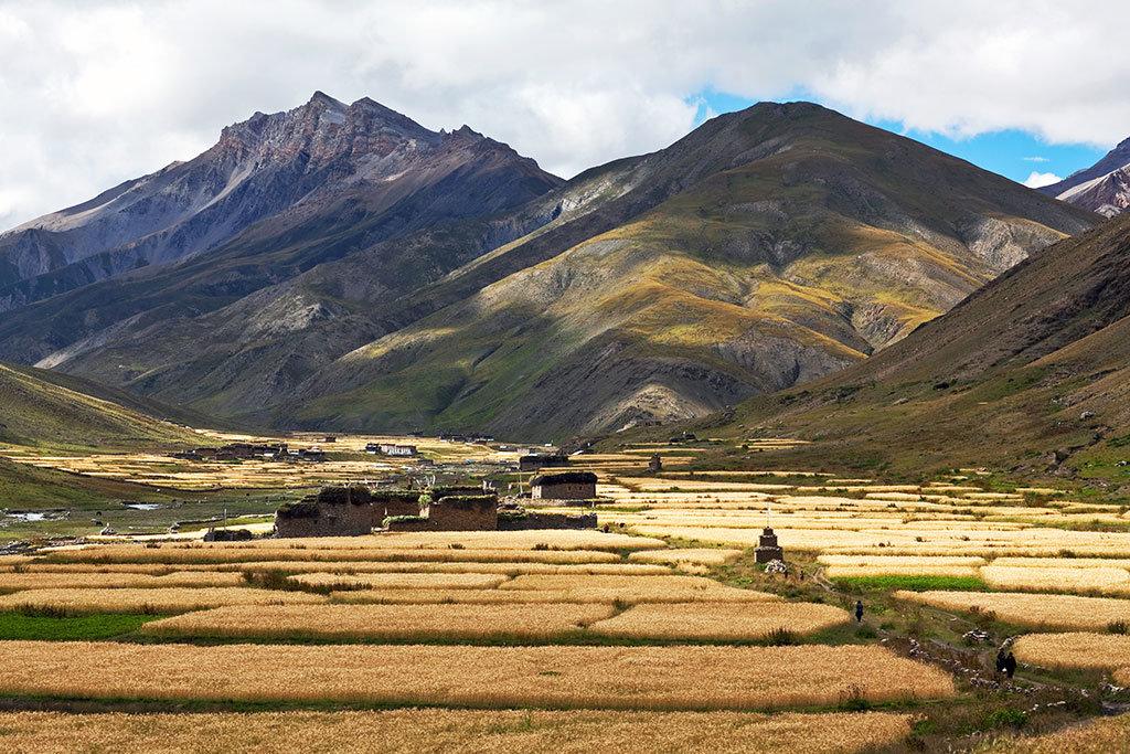 Dho Tarap Village