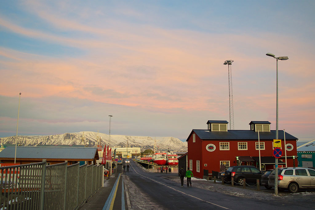 Reykjavik in January