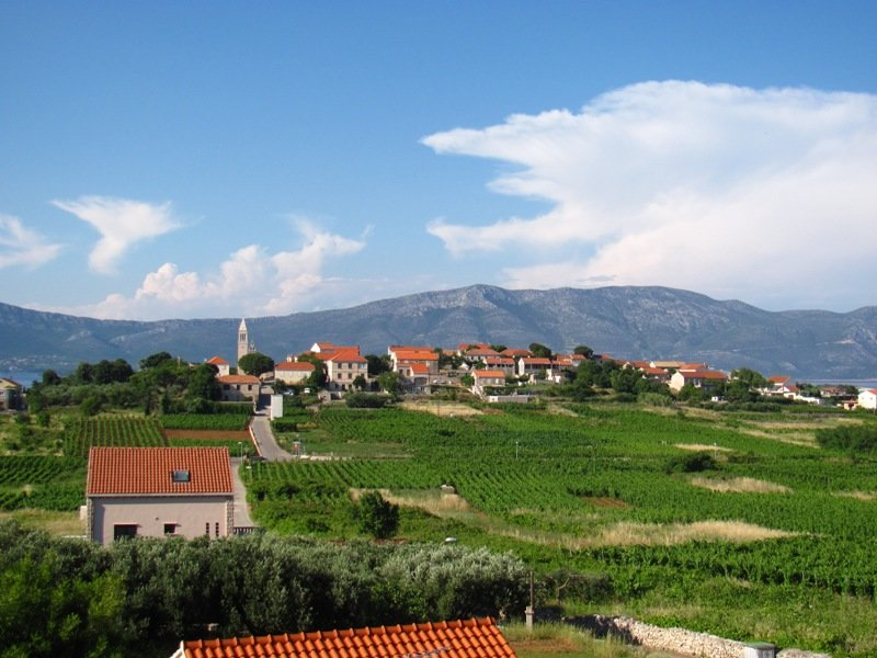 Wine Tasting and Cycling Tour in Korcula - Visit the Lumbarda vineyards